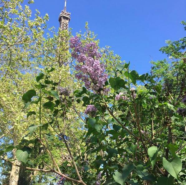 Family trip to Paris – my 5 tips